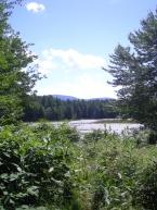 Elkins marsh